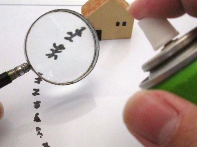 アパートに蟻が大量発生した場合の駆除費用は大家さんもち?