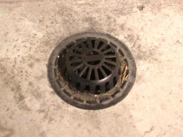 ベランダに洗濯機を置くとどうなるの?排水溝には要注意!