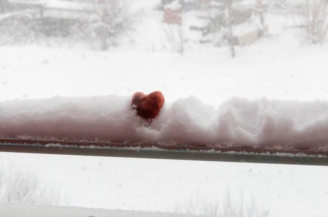窓へのDIYで部屋の断熱性をアップ!夏冬を快適に過ごそう!