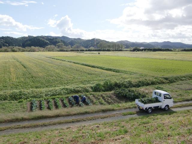 農地転用をする場合注意すべきことは?開発許可の順序とは?