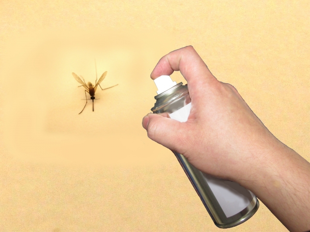 窓からの害虫を防げ!虫除けスプレーの効果的な使い方とは?